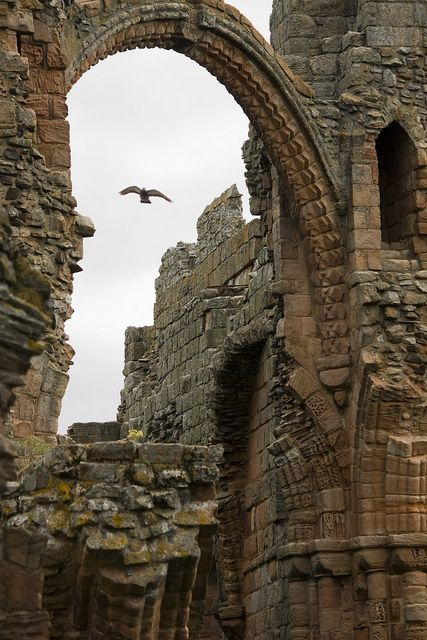 ruins of Lindisfarne Priory, a monastery on Holy Island that dates to the 7th-century when St Aidan arrived here from Iona, at the request of King Oswald of Northumbria.  Good discussion of the Desolution.