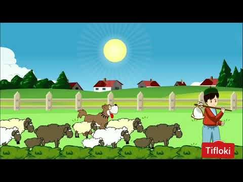 قصة الراعي الكذاب قصص عربية Arabian Fairy Tales Youtube Fairy Tales Tales Arabians