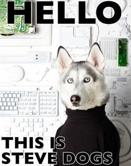 What Steve Jobs would look like as a dog, unveiling the iBone 5.