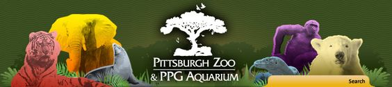 The Pittsburgh Zoo and Aquarium has many exotic animals. It is a great walk.