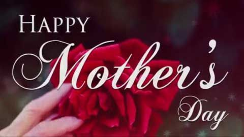 50 Best Mother S Day Special Whatsapp Status Video Download 2020 Video Song Status Happy Mothers Day Wishes Happy Mother S Day Greetings Mother Day Wishes