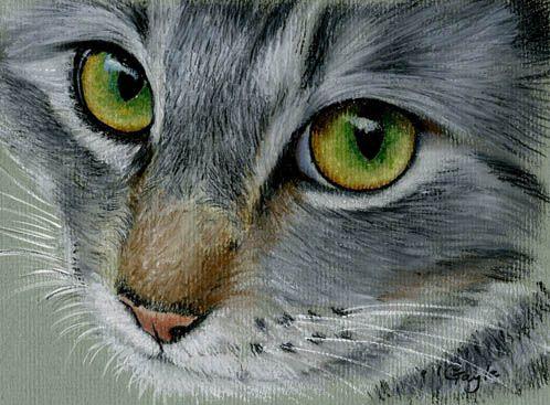 Oil Pastel Art cat   Cat in Oil Pastel - WetCanvas   (Looks like Dewy.)