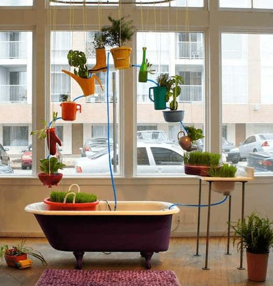 Fun Store-Front Aquaponic System | Hydroponic Systems Round Up