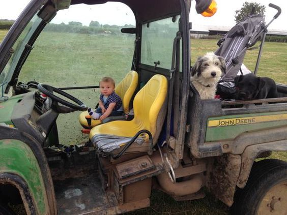 Ronnie and Tess are getting the little one started early-8 months early! #farm24