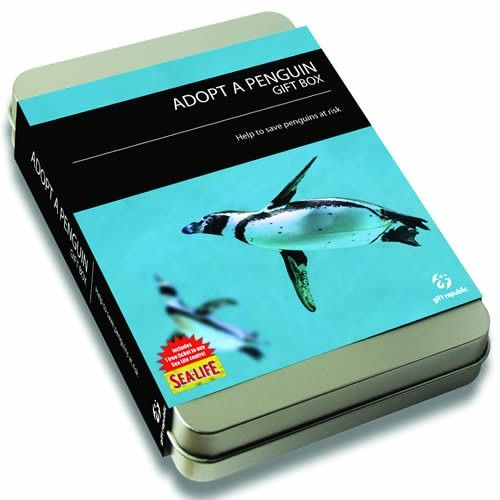 Penguin Adoption - Adopt A Penguin Gift Box  from Personalised Gifts Shop - ONLY £19.99