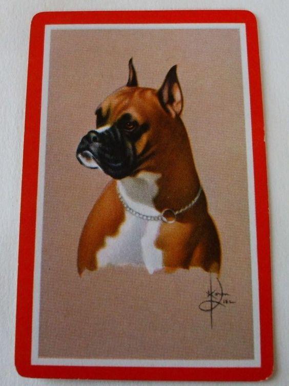 Vintage Swap Playing Card/ blank back.  Boxer/Dog Portrait(1) card