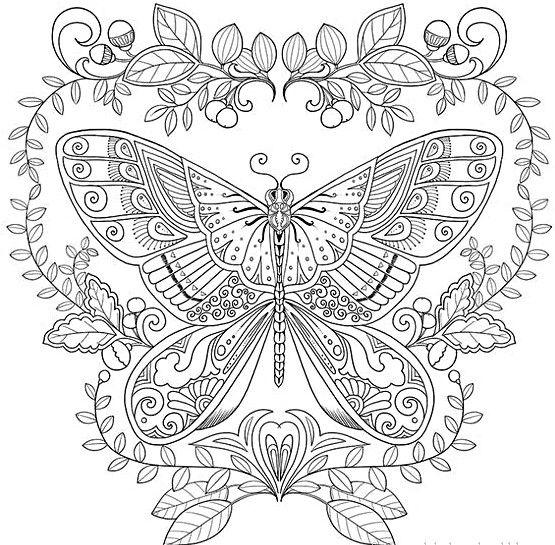 Mandalas De Mariposas Bellas Mariposas Para Colorear