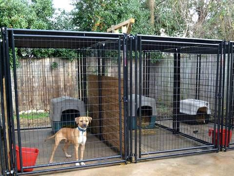 Dog Kennel High Safety Corrosion And Rust Resistance Enough Space In 2020 Diy Dog Kennel Cheap Dog Kennels Dog Kennel Flooring