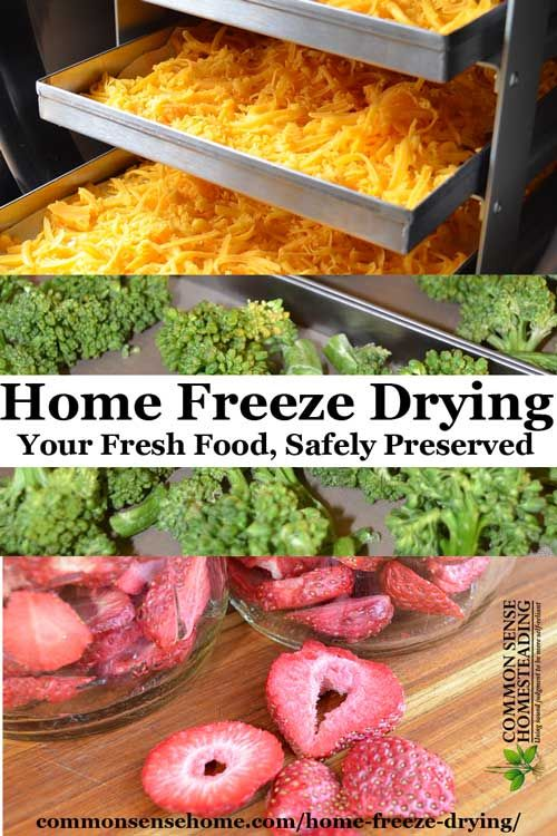 Home Freeze Drying Before You Buy A Freeze Dryer Read This Article Freeze Drying Food Dried Vegetables Freeze Drying