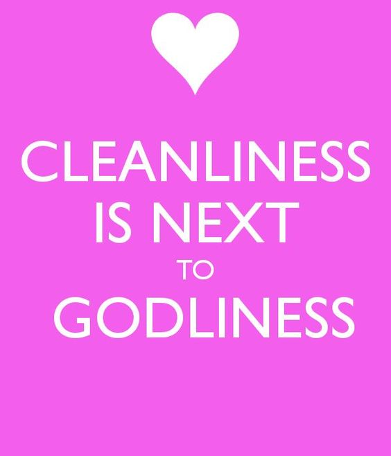 Cleanliness Quotes Cleanliness Quotes Godliness Cleanliness