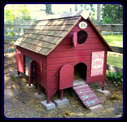 Chicken coop plans coops and chicken coops on pinterest for Homemade chicken coops for sale
