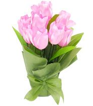 Spring Inspirations Potted Tulips Pink Buy