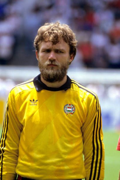 Hungary goalkeeper Peter Disztl