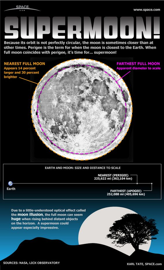 Supermoon by Kate Tate, space.com #Supermoon #Infographic #Astronomy #Kate_Tate #space_com