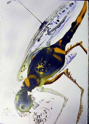 """""""Locusta et Bruchus"""", gouache von Salvador Dali (1904-1989, Spain)"""