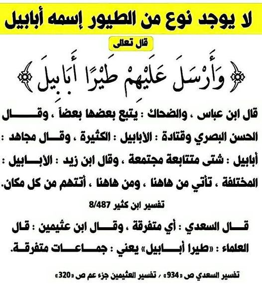 Pin By Essam Sayed Mohamed On لمسات بيانيه Islamic Love Quotes Quran Tafseer Words
