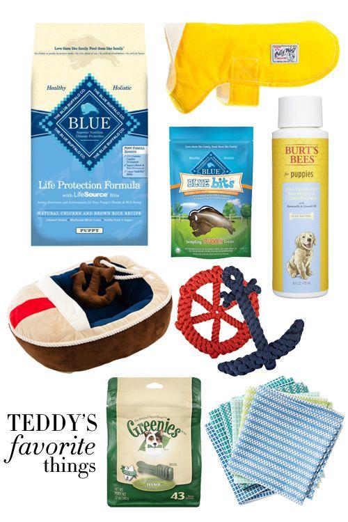 Teddy's Favorite Things