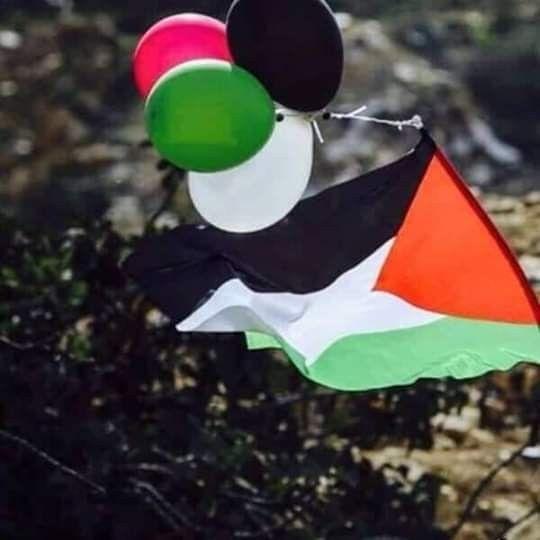 لن تنكسري بإذن الله وستبقى يا علم فلسطين مرفوعا دوما Soyut Resim Tuval Kudus Islami Sanat