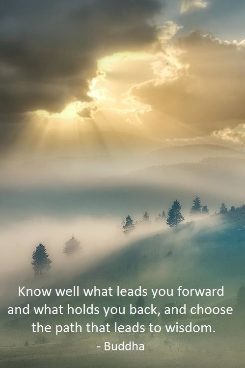 """Know well what leads you forward and what holds you back, and choose the path that leads to wisdom."" ~ Buddha"
