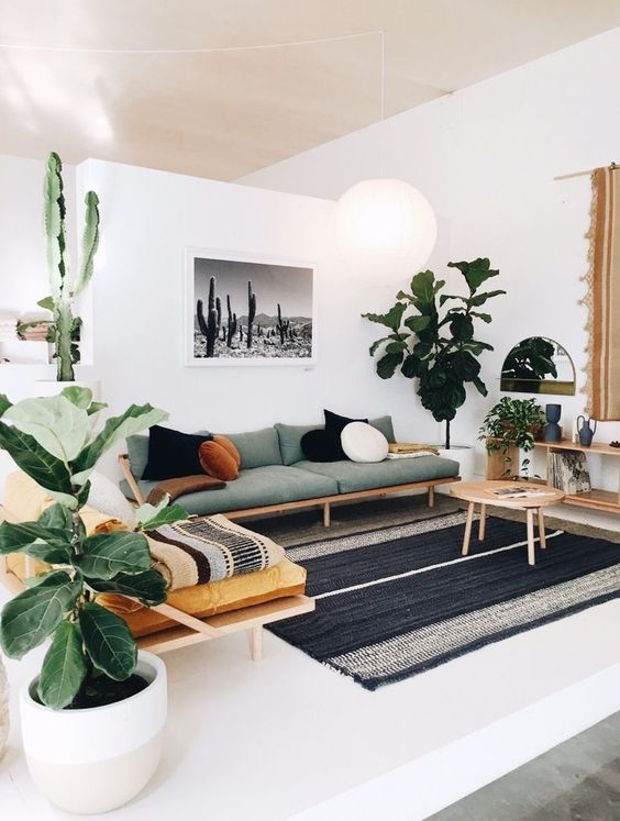 Modern Scandinavian Living Room In Green Interior With Cactus