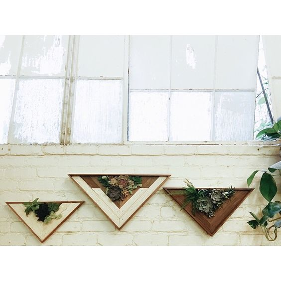 more collaboration nation with @searoonsucculents  come snag one of these succulent triangles tomorrow @uosanfrancisco 5-9pm!