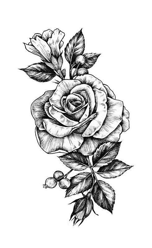 Lukisan Bunga Mawar Simple