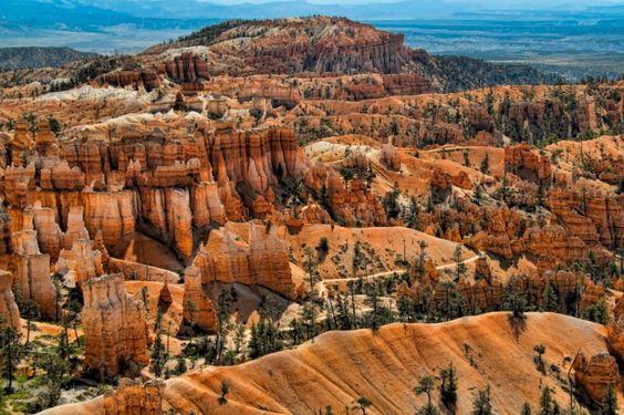 Bryce Canyon #brycecanton #utah #photography #landscape #travel