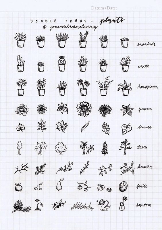 Doodle ideas 1 - plants Remember when I asked you what should I do with the remaining pages of my bujo? Well, the most suggested thing was to do some doodle ideas, which I did, yaay :D. Now I know a...: