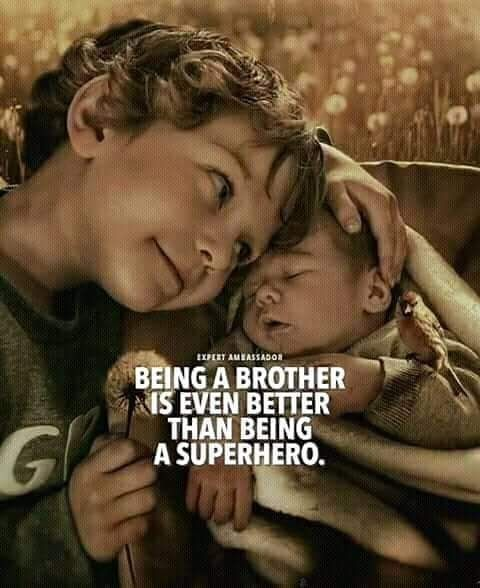 Sister Big Brother Quotes Brother Quotes Little Brother Quotes