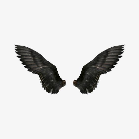 Wing Black Wings Eagle Png Image Wings Png Angel Wings Png Black Wings