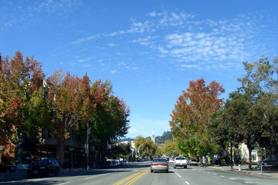 A Day in Berkeley: Telegraph Ave. and Campus Wanders