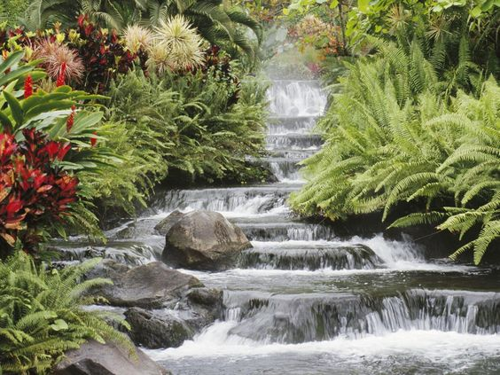 waterfalls pictures for screensavers | Wallpaper for Windows XP, free wallpaper, Waterfall