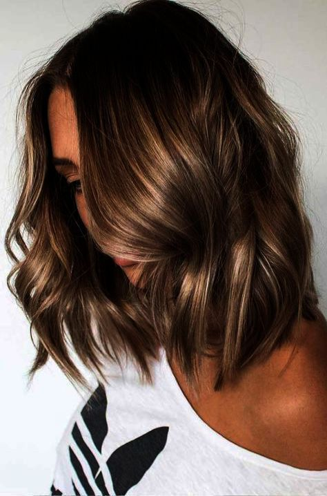 Great Clips Haircut Near Me