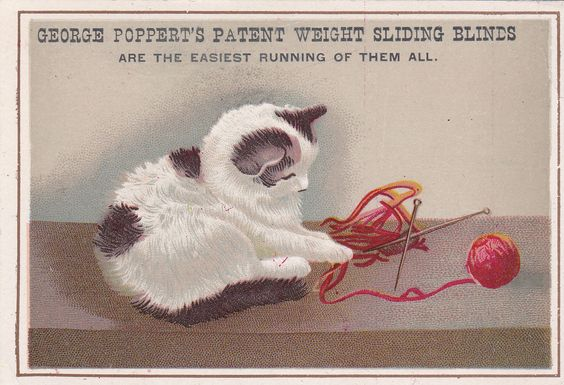 Victorian Late 1800s Pretty Cat Blinds George Popperts Trade Card | eBay