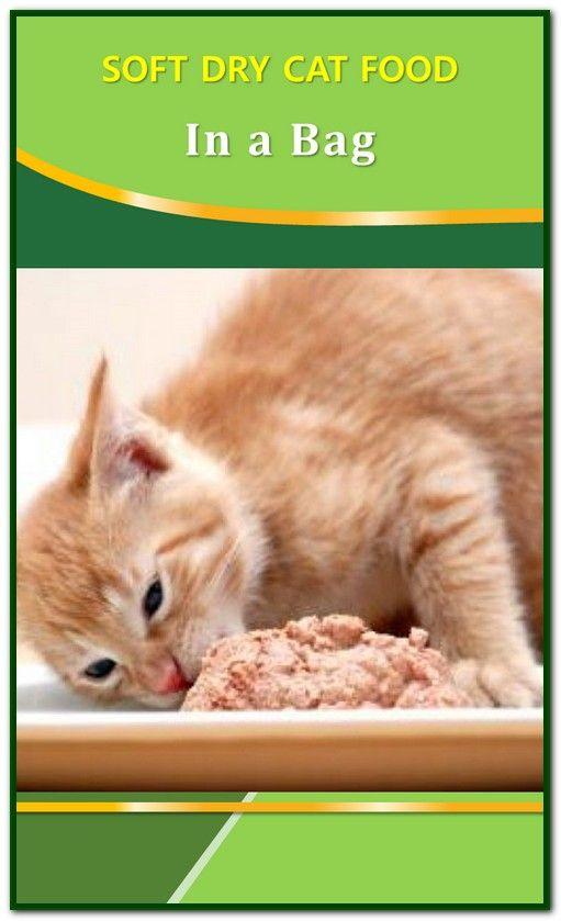 Soft Dry Cat Food In A Bag Dry Cat Food Cat Food Cats