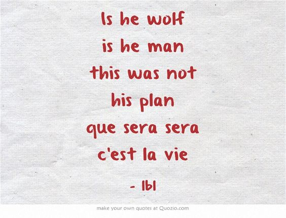 Is he wolf is he man this was not his plan que sera sera c'est la vie