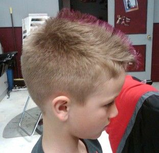 Miraculous Purple Tips Purple And Boys On Pinterest Hairstyles For Women Draintrainus