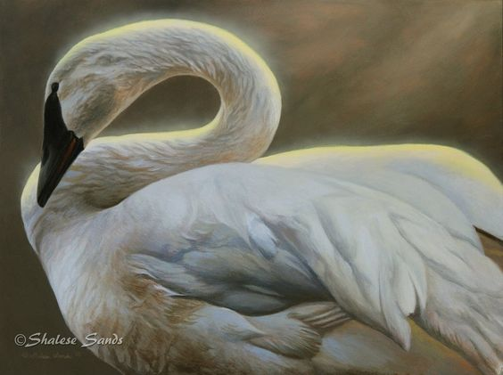 Angelic by Misted-Dream on DeviantArt