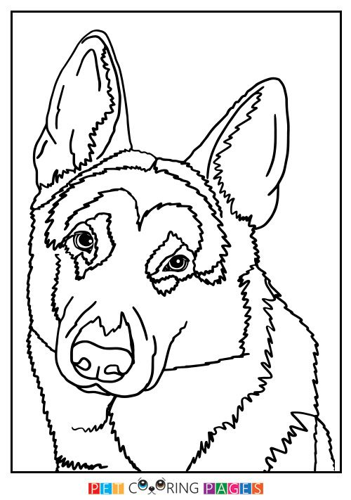 German Shepherd Dog Coloring Page Dog Coloring Page, German Shepherd  Colors, Coloring Pages