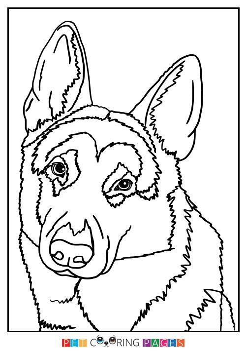 German Shepherd Dog Coloring Page Dog Coloring Page German Shepherd Colors Coloring Pages