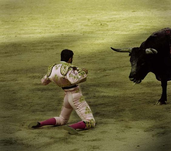 Anderson Spain Bull Fight