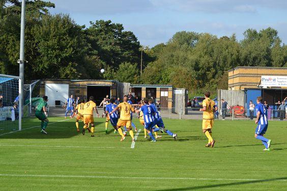 Stortford v Sutton United
