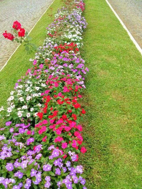 As ruas da vila de Criúva estão sempre enfeitadas com belas flores.