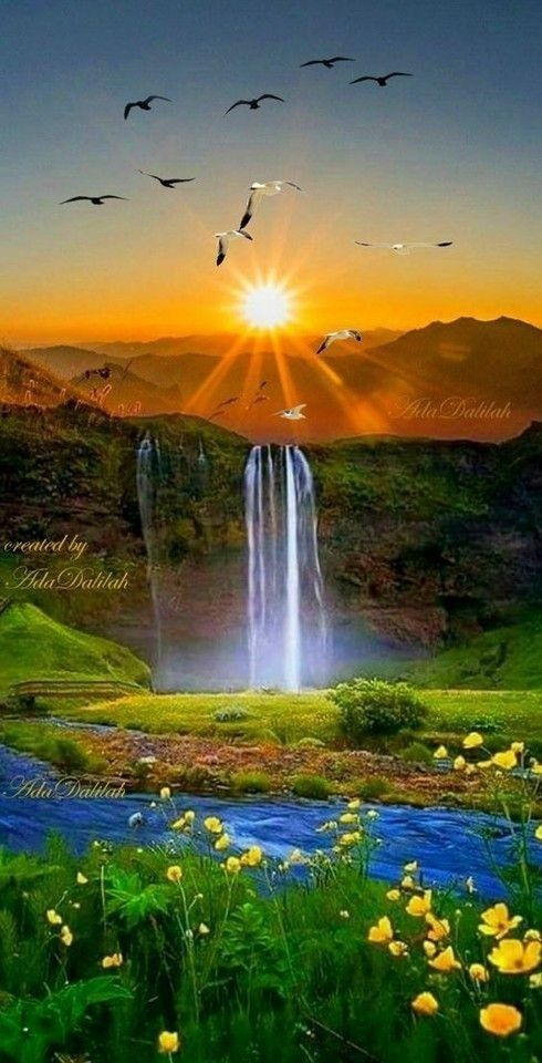 Beautiful Nature Images : beautiful, nature, images, Nature/Beauty/Amazing/Photgraphy/Wallpaper/Theme/Mobile, Themes/, Blowing, #Nature, #Bea…, Beautiful, Nature,, Nature, Wallpaper,, Pictures