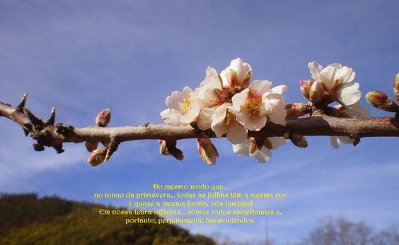 Crocheteando...PENSAMENTOS!: Primavera da VIDA