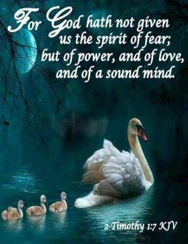 2 Timothy 1:7 (KJV) For God hath not given us the spirit of fear; but of power, and of love, and of a sound mind.