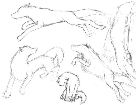 волки аниме в позе на охоте