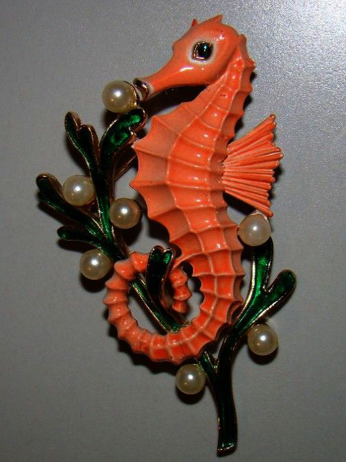 Jewellery Stores Montreal Amid Helix Jewellery Near Me His Jewellery Alterations Near Me Seahorse Jewelry Jewelry Collection Brooch