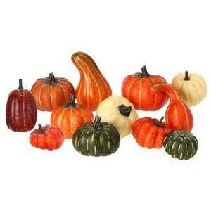 GOURDS FALL WIRED RIBBON- AUTUMN HARVEST THANKSGIVING -WREATHS PUMPKINS