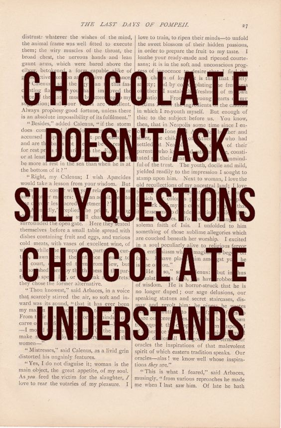 chocolate: Chocolate Doesn T, Silly Questions, Funny Quote, Chocolate Quotes, Love Chocolate, So True